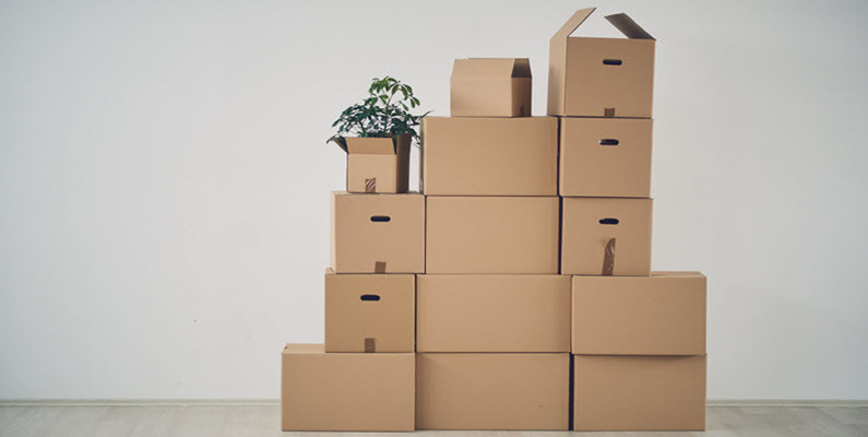 Well Organized Boxes